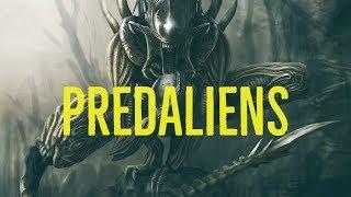 Video Predaliens Explored (Alien vs. Predator) MP3, 3GP, MP4, WEBM, AVI, FLV Oktober 2018