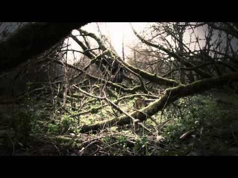 Sinful Souls - Rotten Hearts (2011) (HD 720p)
