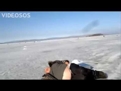 видео тюлень на рыбалке