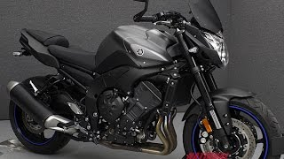 7. 2013 YAMAHA FZ8  - National Powersports Distributors