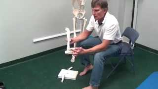 Correcting Ankle and Foot Alignment to Improve Your Squat Function
