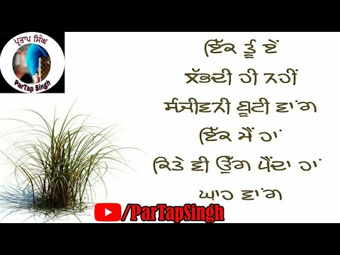 Quotes about happiness - Best Punjabi Status  Best Punjabi Status For WhatsApp  Best Punjabi Status Sad