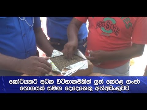 Two individuals arrested with a stock of Kerala Ganja valued at more than Rs. 10 million