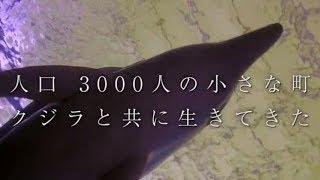 映画『おクジラさま ふたつの正義の物語』予告編