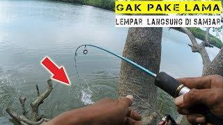 Video Mancing Ikan Barramundi Di Sungai Sesumpu MP3, 3GP, MP4, WEBM, AVI, FLV Mei 2019