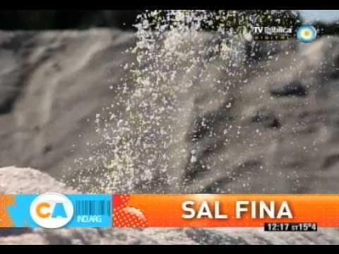 Sal Fina