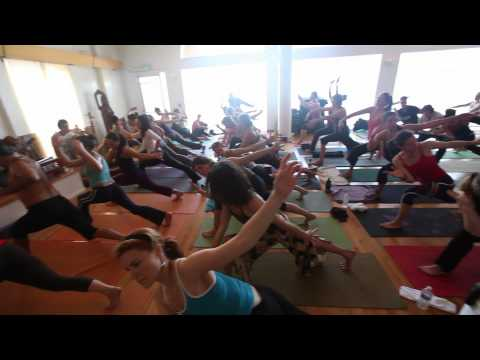 Embodying the Flow: Prana Flow Teachers Training