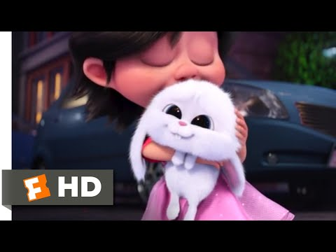 The Secret Life of Pets - Puppy (And Bunny) Love | Fandango Family