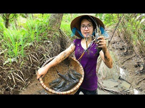 Tát Ao Bắt Tôm Càng Xanh Khủng Luộc Trong Trái Dừa Ăn Ngay Tại Chổ | MTTL Tập 129 - Thời lượng: 24:55.