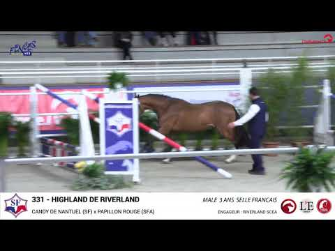 HIghland de Riverland - Saint-Lô 2020