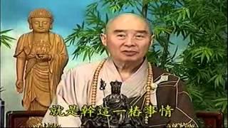 Kinh Vô Luợng Thọ (1998) tập 89&90 - Pháp sư Tịnh Không