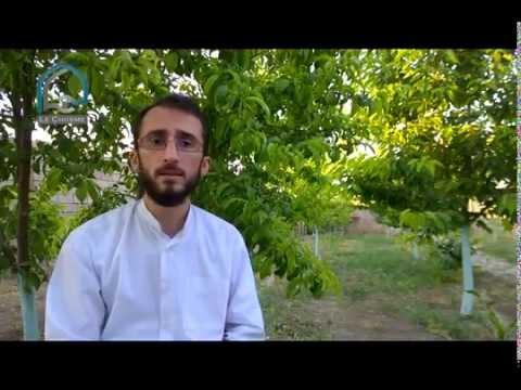 Le Chiisme: Le Prophète Mohammed selon le Coran 2