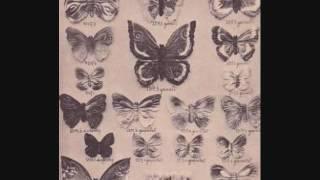 Video Plachý host - Sbírka otazníků