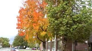 Bennington (VT) United States  City pictures : Road Trip: Bennington Vermont