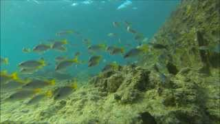 SANTA MARIA  -- SNORKELING IN THE SOUTH OF ISLAND