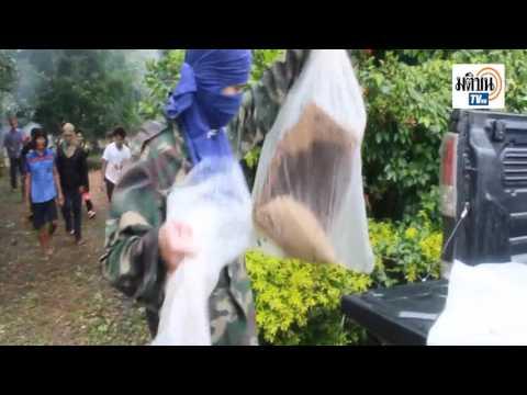 【影片】罕見紅色蜂蜜!泰國捕蜂人秀絕技