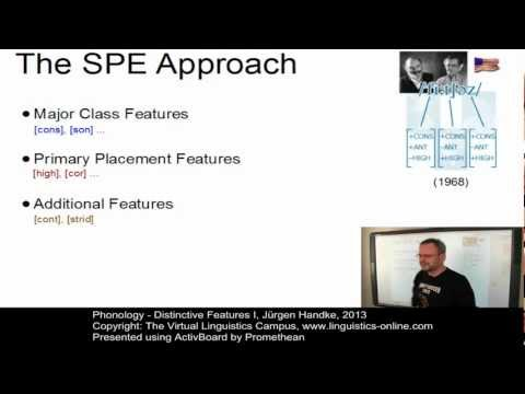 PHY103 - Distinctive Features I
