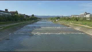Kamogawa Japan  city photo : Kyoto Japan 4K Kamogawa River - 京都 鴨川