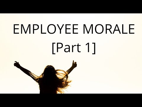 Employee Morale (Part 1) | Meaning | Types | relationship with productivity | UGc NTA Net