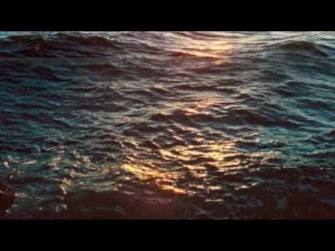 Tekst piosenki The Cinematic Orchestra - That Home po polsku