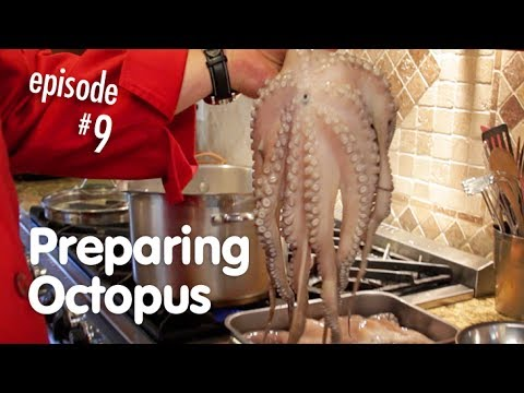 Preparing And Cooking Your Octopus For Use In Any Recipe, How To Make It Tender
