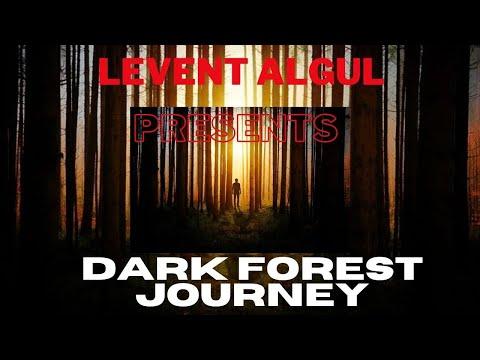 Dark Forest Journey..