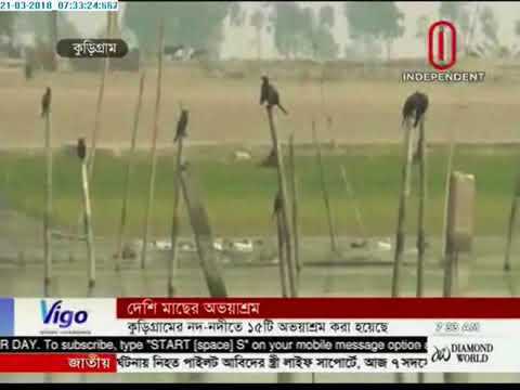 Fish farming in Kurigram (21-03-2018)