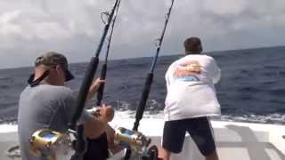 Angler's Envy rod in action on Fin Hunter's blue marlin.