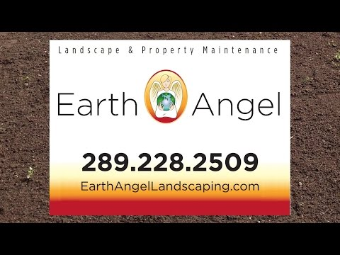 Looking for the Right Landscape and Property Maintenance Company? You just found it. Lucky.
