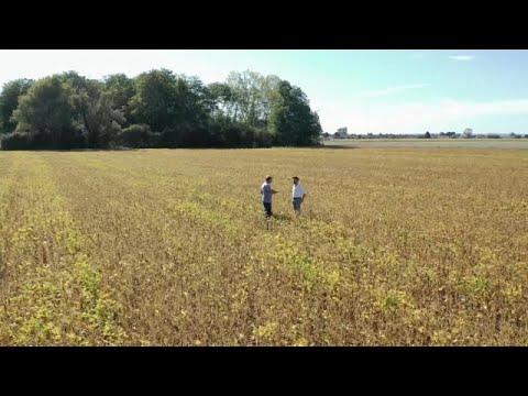 Η καλλιέργεια σόγιας στην Ευρώπη και οι συνέπειες