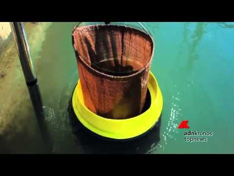 Il 'cestino' che raccoglie la spazzatura in mare...