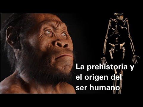 La prehistoria y el origen del ser humano - Historia