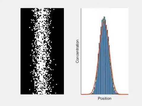 Random walk diffusion compared with fick's 2nd law