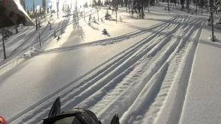 7. 2009 Summit Skidoo REV XP 800 154 Contour+2 Tree Riding Boondocking 1080P