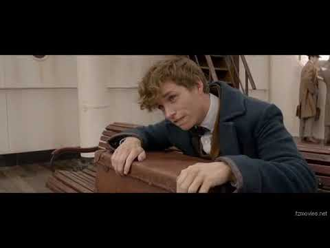 Fantastic Beasts And Where To Find Them 2016 BluRay High Fzmovies Net 1
