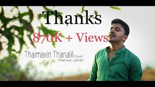 Video Thaimavin Thanalil (Oru Yathramozhi)| Cover | Pranave James MP3, 3GP, MP4, WEBM, AVI, FLV Januari 2019