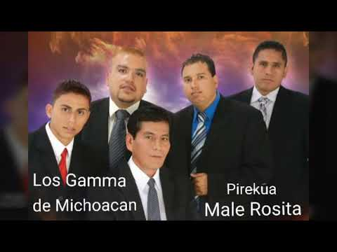 """Male Rosita"" Los Gamma de Michoacan."