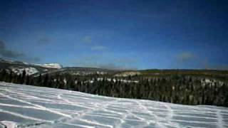 7. 2010 ski-doo expedition 1200   2