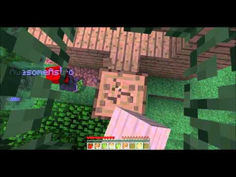 Minecraft Part 1: Mountin Goats