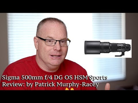 Sigma 500mm f/4 DG OS HSM Sports lens review: by Patrick Murphy-Racey