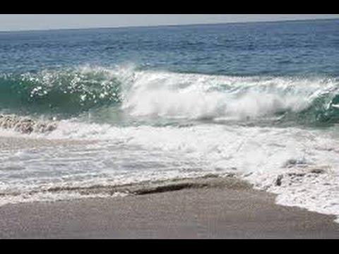 Wet sand beach metal detecting with White's TDI sl