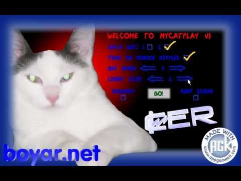 Video of MyCatPlay