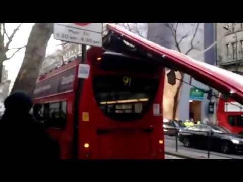 Kuriozní nehoda: patrový autobus bez střechy, strom vydržel