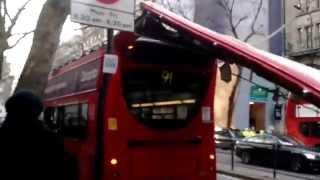 فيديو: حافلة بطابقين تفقد سقفها بعد اصطدامها بالأشجار في لندن