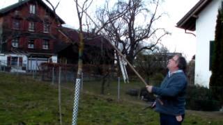 #295 Schneiden im Garten 2011 - Apfelhochstamm Wildmauser 6v6