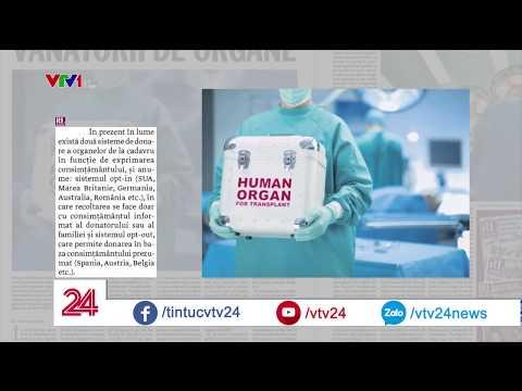 Người châu Âu cần nội tạng, người châu Phi có nội tạng và muốn ở châu Âu | VTV24 - Thời lượng: 2:35.