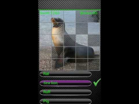 Video of Kids Animal Quiz Pro