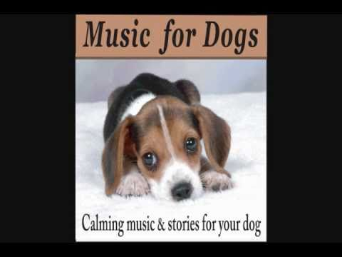 Music for Dogs – Calming Music and Stories for your Dog