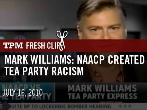The dumping of a Tea Partier who made racially charged remarks was about more than just political correctness. Zachary Roth on the deep split that could cripple the movement this fall.