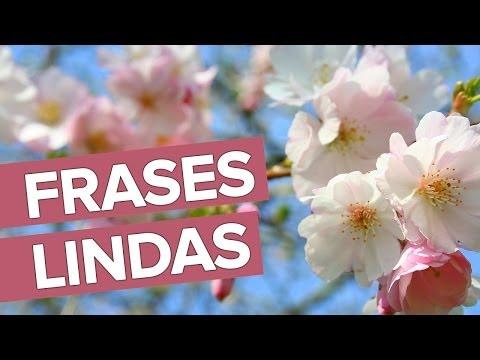 mensagens lindas - Frases Lindas Para se Inspirar